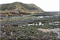 TA0390 : Low tide, North Bay by Pauline E