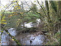 SJ6661 : The River Weaver looking upstream by Dr Duncan Pepper