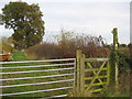 SJ6461 : Stile & Footpath at Paradise Farm by Dr Duncan Pepper