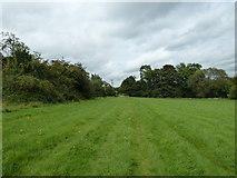 SU6017 : South Downs Society Green Travel Walks Week (204) by Basher Eyre