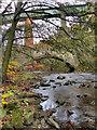 SJ9993 : River Etherow; Broadbottom Crossings by David Dixon