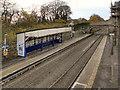 SJ9993 : Broadbottom Railway Station by David Dixon