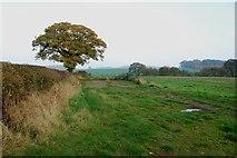 SJ9928 : Looking across fields towards the Chartley Estate. by Mick Malpass