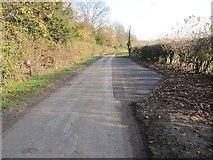 SU5985 : Passing Place on Ferry Lane by Bill Nicholls