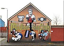 J3475 : Boxing mural, Belfast by Albert Bridge