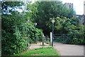 TG1908 : River Yare Walk by N Chadwick