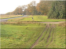 TQ1350 : Erosion by Ranmore Common Road by Colin Smith