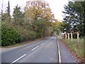 TM2172 : B1117 The Street, Horham by Adrian Cable