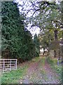 TM4478 : Footpath to Tuttles Wood by Adrian Cable