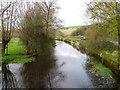 SU0425 : River Ebble, Broad Chalke - 8 by Maigheach-gheal