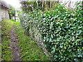 SU0325 : Footpath, Broad Chalke by Maigheach-gheal