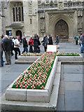 ST7564 : Bath Abbey - Poppy Field by Roy Hughes