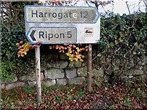 SE2768 : Road Sign by Matthew Hatton