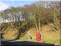 TA1280 : K6 phone box, Ravine Road by Pauline E