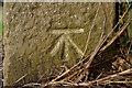 SE2860 : Cut Bench Mark, Ripley Milestone by Mark Anderson
