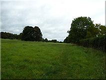 SU6017 : South Downs Society Green Travel Walks Week (213) by Basher Eyre
