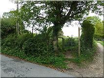 SU6017 : South Downs Society Green Travel Walks Week (216) by Basher Eyre