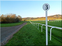 ST5295 : The three furlong post, Chepstow Racecourse by Jaggery