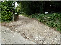 SU6017 : South Downs Society Green Travel Walks Week (226) by Basher Eyre