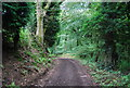 SU7927 : Sussex Border Path by N Chadwick