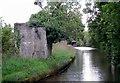SJ6870 : Remains of Bridge No 180 near Whatcroft Hall, Cheshire by Roger  Kidd