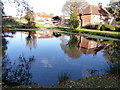 TQ5614 : Pond at West Street Farm by Dave Spicer