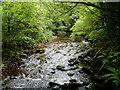 S1100 : Glenshane River, near Cappoquin by ethics girl