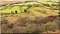 NY2223 : Enclosures south-west of Braithwaite by Trevor Littlewood
