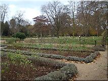 TQ4387 : Victorian Rose Garden by Robert Lamb