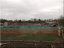 TQ7968 : Woodlands Road Allotments (2) by David Anstiss