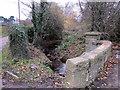 SP0179 : Merritt's Brook Between Waterworks Drive & Frankley Lodge Road by Roy Hughes