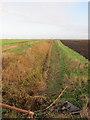 TL5691 : Ditch off Hale Drove by Hugh Venables