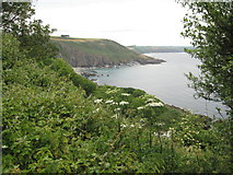 SX5646 : Above Church Cove by Philip Halling