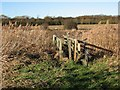 TL5159 : Footbridge to D'Engaynes Fen by John Sutton