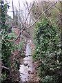 SP0385 : Chad Brook From Nursery Road Bridge Harborne by Roy Hughes