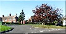 TQ8115 : Churchfield, Westfield, East Sussex by nick macneill