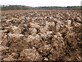 SP8403 : A churned-up muddy field near to Little Hampden by Peter S