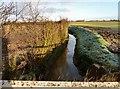 SE5453 : Foss Dike by Andy Farrington