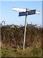TM2579 : Roadsign at the B1116 Harleston Road crossroad by Adrian Cable