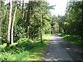 NO8899 : Minor road, Hill of Blairs by Richard Webb