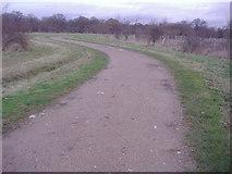 TQ2197 : Path through Saffron Green by David Howard