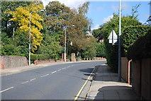 TM1645 : Henley Road, Ipswich by N Chadwick