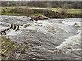 SJ9489 : Chadkirk Weir, River Goyt by David Dixon
