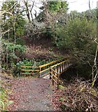 NS4276 : Footbridge over the Overtoun Burn by Lairich Rig