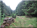 NY6198 : Dry Stone Wall at Rushy Knowe by Les Hull