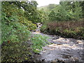 NY7638 : River South Tyne near Tynehead by Les Hull
