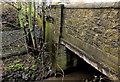 J3673 : The Connswater, Belfast (13) by Albert Bridge