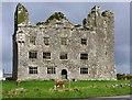 R2393 : Leamaneh Castle, near Kilfenora, Co. Clare by P L Chadwick