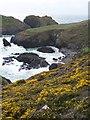 SW6813 : Kynance Cove by David Martin