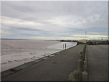 TA1228 : Looking upriver along the River Humber by Ian S